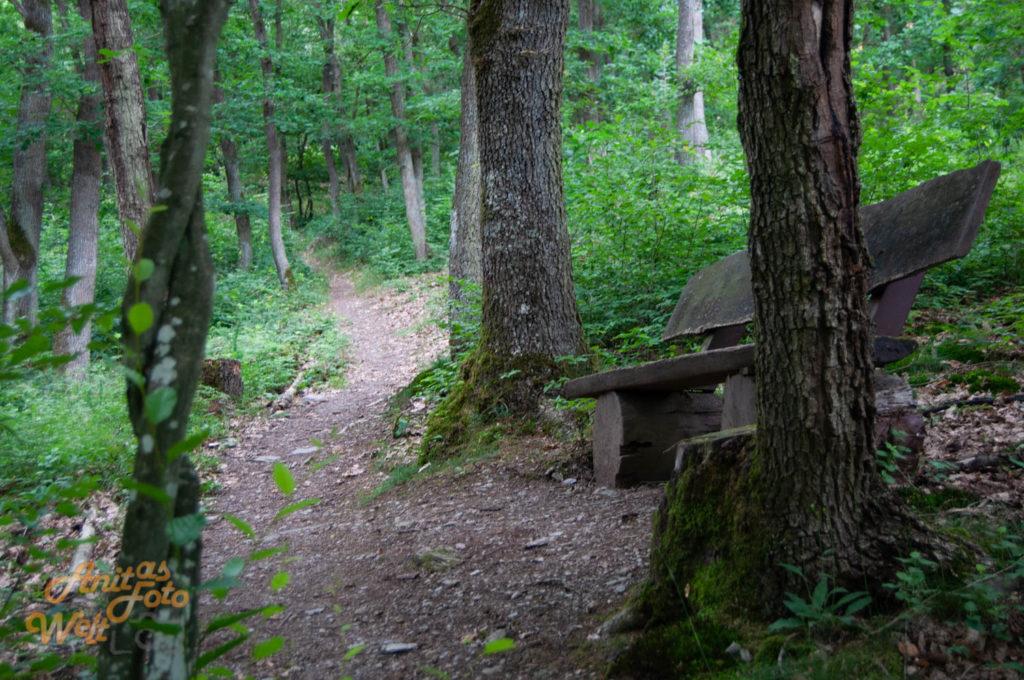 Lauschige Plätze gibt es hier im Wald