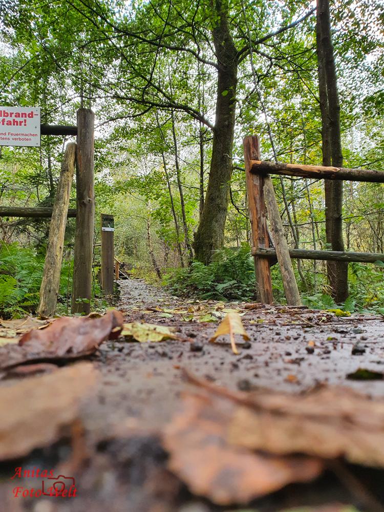 Eingang zum Kyrillpfad