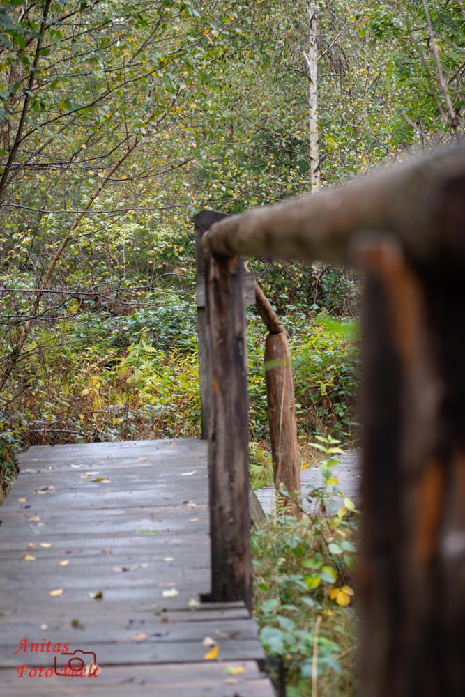 Holzsteg auf dem Kyrillpfad